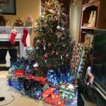 Christmas 2014 026